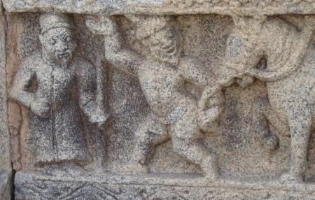 Horses imported Vijayanagar